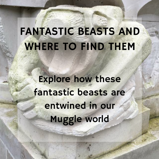 Harry Potter Family-Friendly Tour