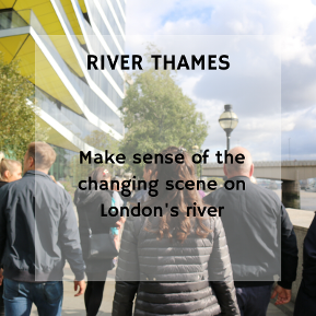 River Thames: a private tour