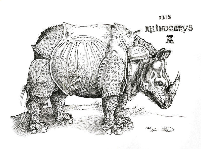 Rhinoceros in London